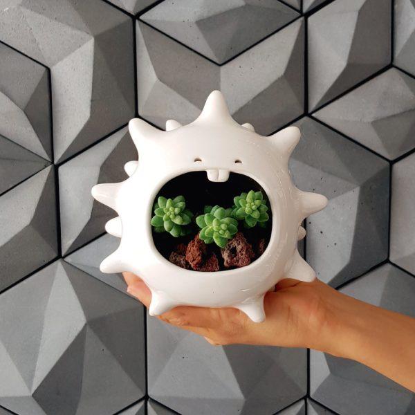 comelon erizo de ceramica marca tuio diseño mexicano planta suculenta cactus