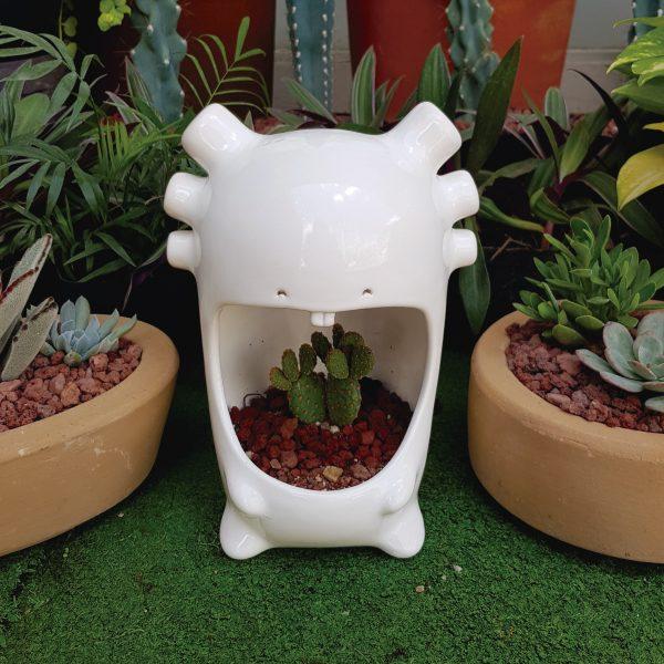 comelon ajolote de ceramica marca tuio diseño mexicano cactus jardin decoracion