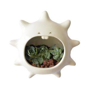 erizo de pared de ceramica marca tuio diseño mexicano decoracion del hogar