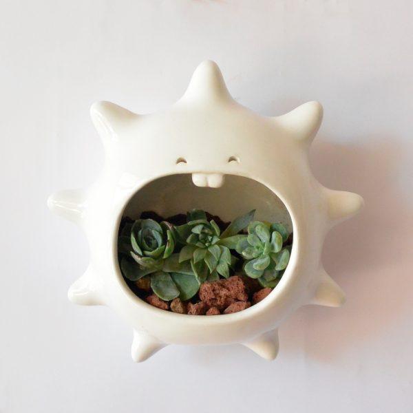 erizo de pared de ceramica marca tuio diseño mexicano cactus maceta planta suculenta