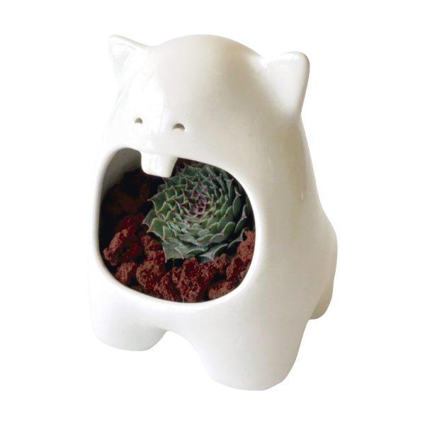 comelon huella de ceramica marca tuio diseño mexicano suculentas plantas cactus