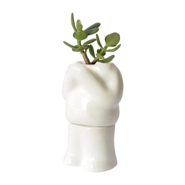 maceta cuerpo hood pies colgando de ceramica marca tuio diseño mexicano plantas