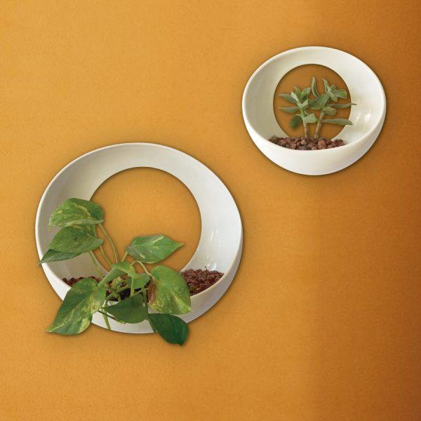 maceta de pared luna de ceramica marca tuio diseño mexicano artesanal muro verde