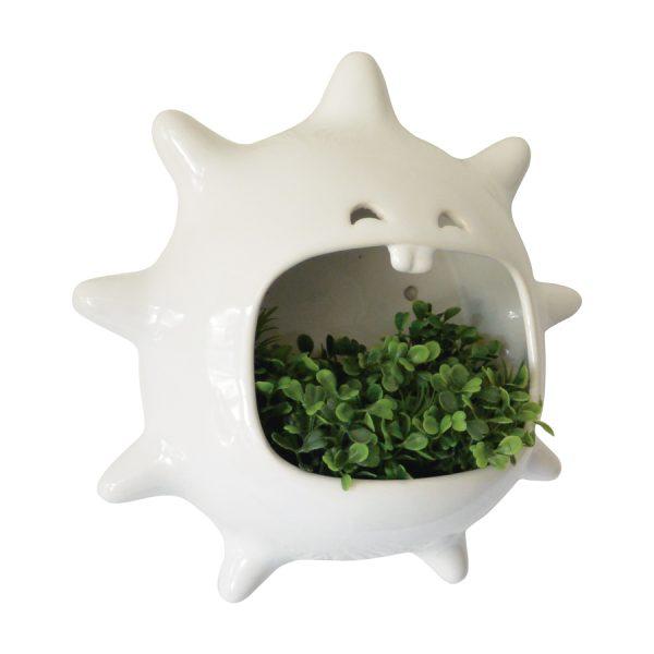 mega comelon erizo de ceramica marca tuio diseño mexicano muro verde