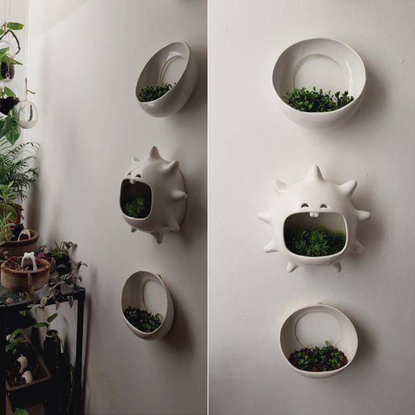 maceta de pared mega comelon erizo de ceramica marca tuio diseño mexicano
