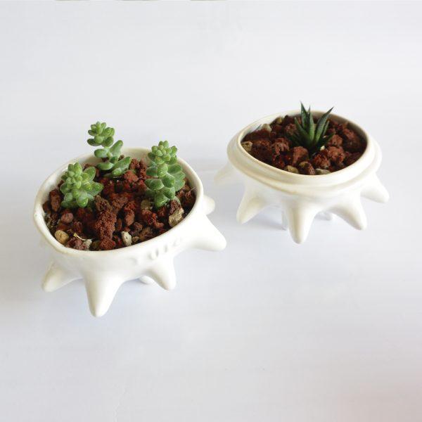 tazon erizo con tapa de ceramica marca tuio diseño mexicano regalo corporativo