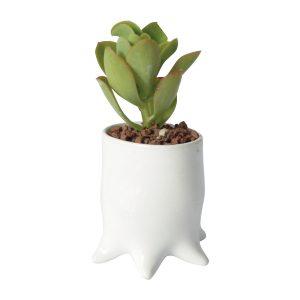 tazon pulpo de ceramica marca tuio diseño mexicano maceta decoracion hogar