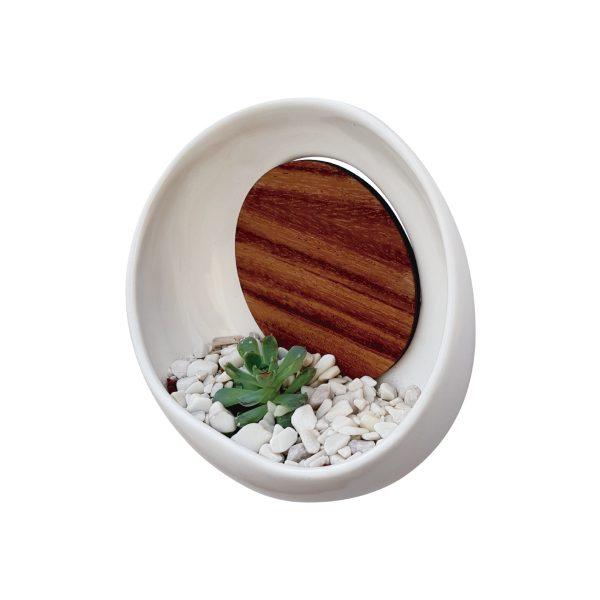 maceta de pared luna llena 22 de ceramica con madera para pared marca tuio diseño mexicano muro verde plantas suculentas cactus